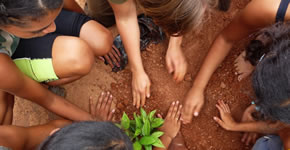 children_hands_planting
